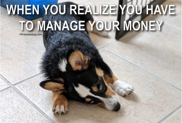 Personal Finance 101 | Money Dog Meme | The Loaded Pig