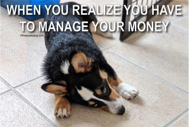 Personal Finance 101 | Money Dog Meme | The Loaded Pig