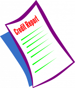 Credit Score Guide | The Loaded Pig